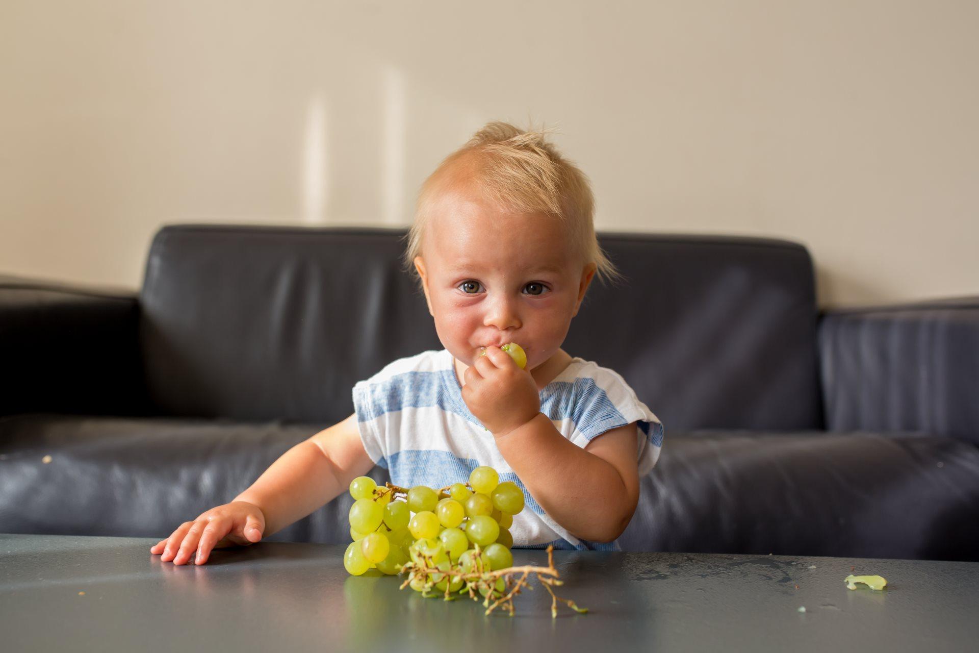 kako iseci grozdje_1154826175